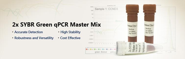 2x SYBR Green qPCR Master Mix